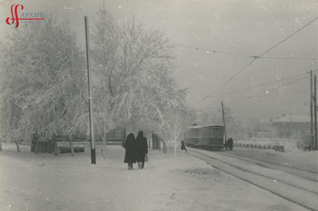 Разгуляйский сквер. Деревья в инее.  22 января 1961.